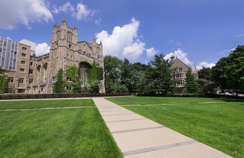 Universität von Michigan lizenzfreie stockfotos