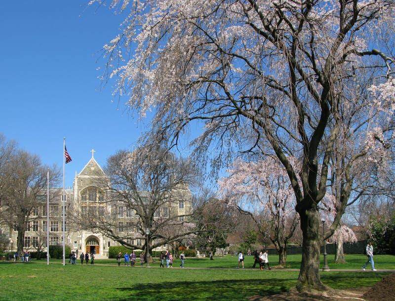 Université Blanche-Gravenor de Hall Georgetown photos stock