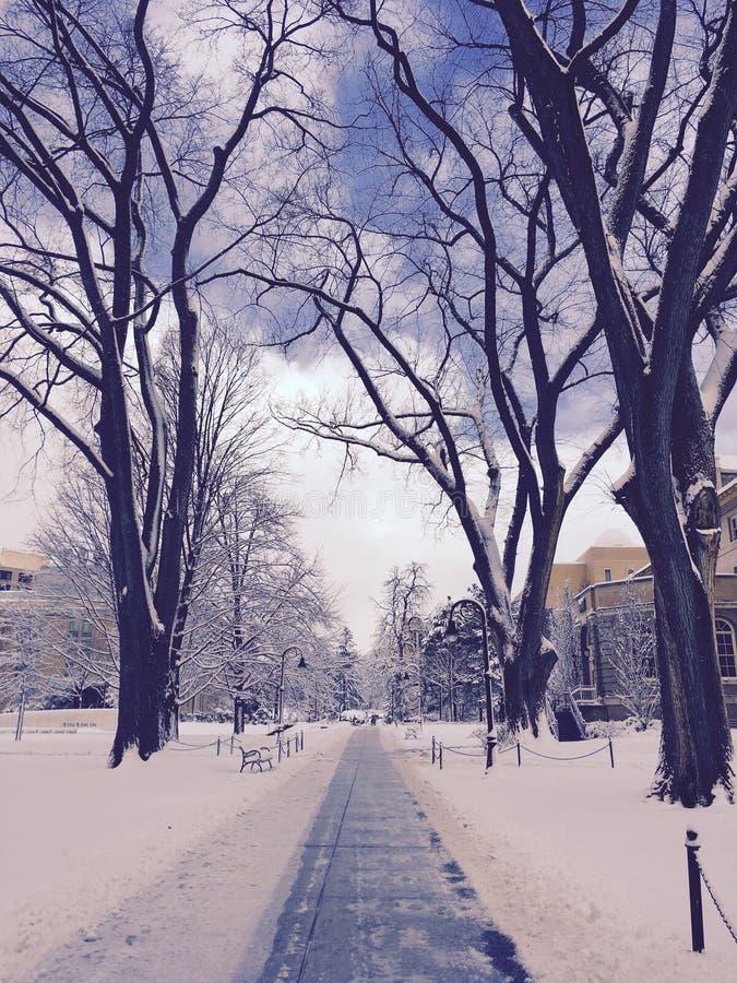 Université de l'Etat de Pennsylvanie photos stock