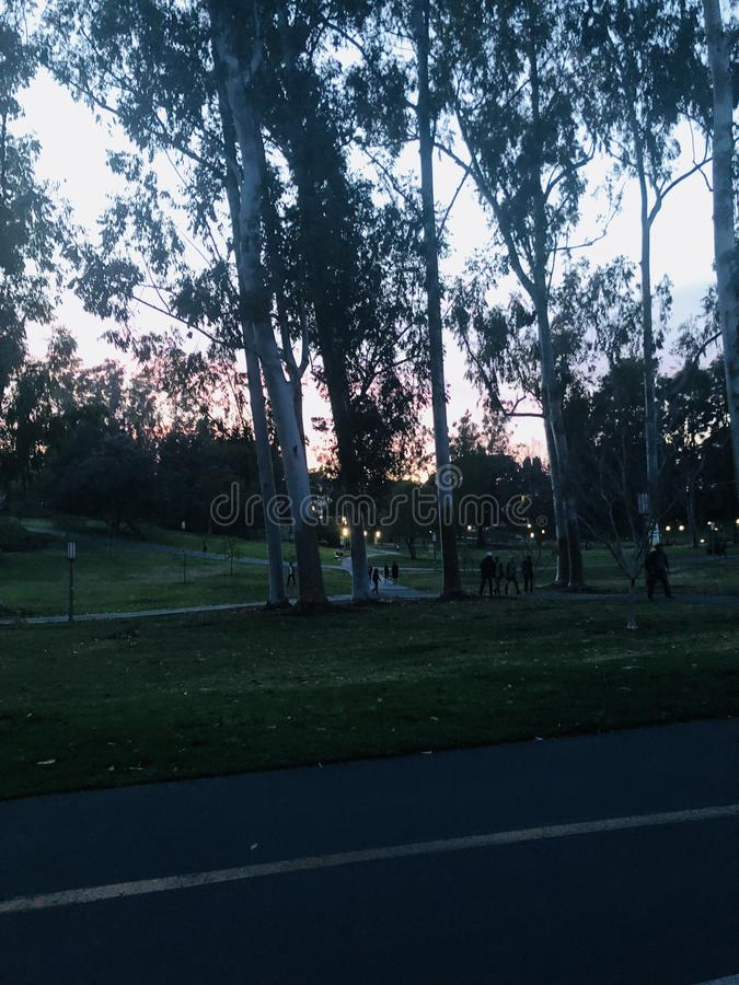 Université de la Californie Irvine photo stock