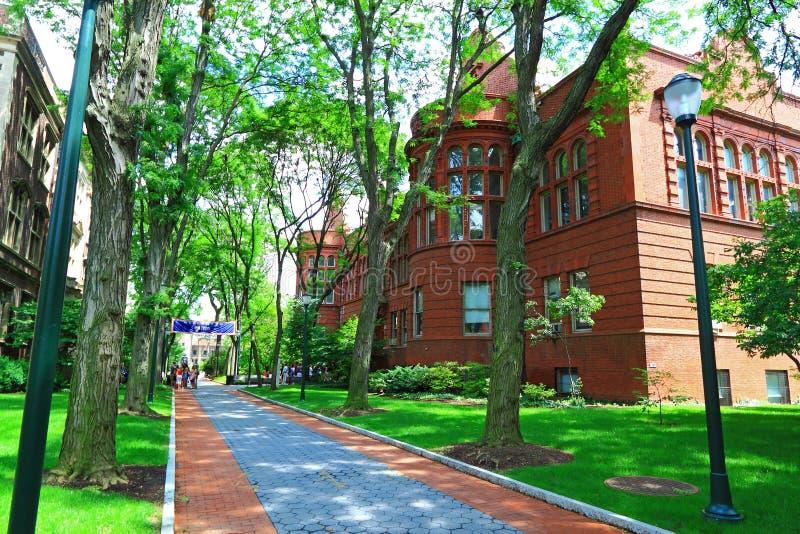 Université de Pennsylvanie photos libres de droits