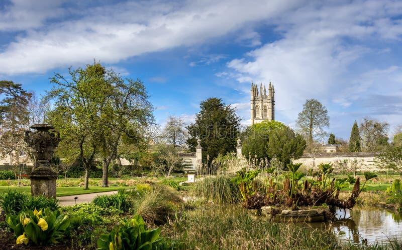Université des jardins botaniques d'Oxford photos libres de droits