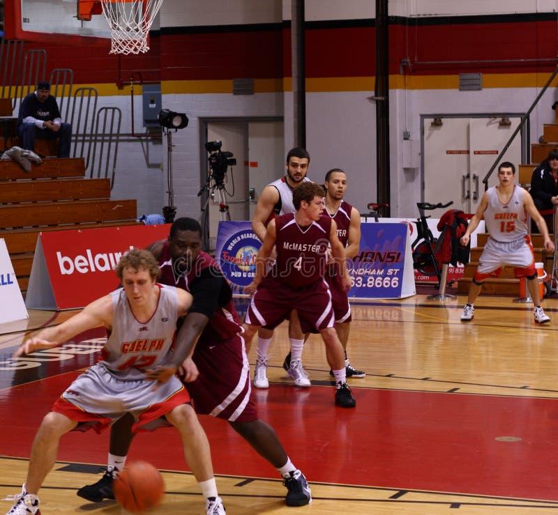 Universitair basketbal stock foto
