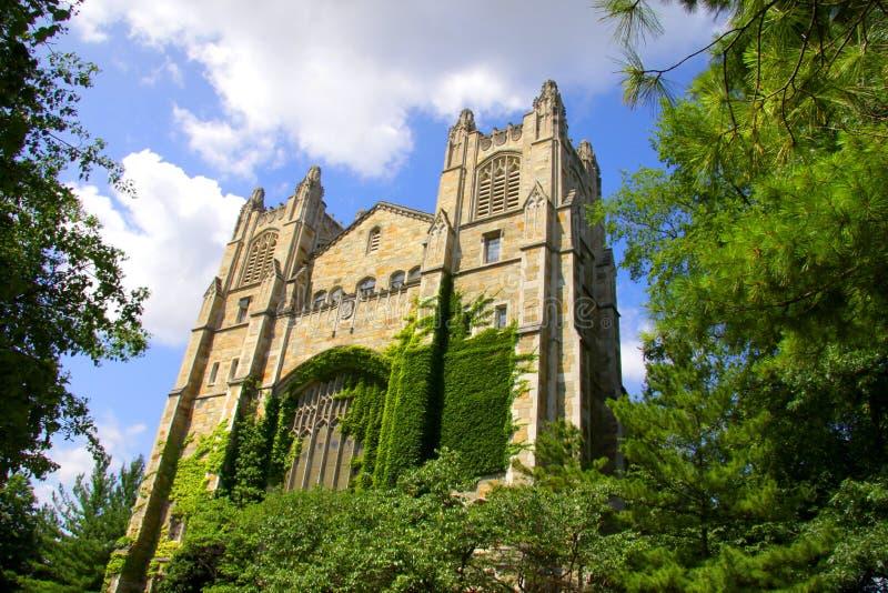 Universiteit van Michigan royalty-vrije stock foto