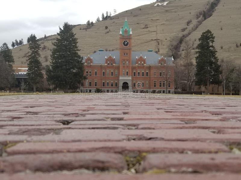 Universiteit van Montana stock foto