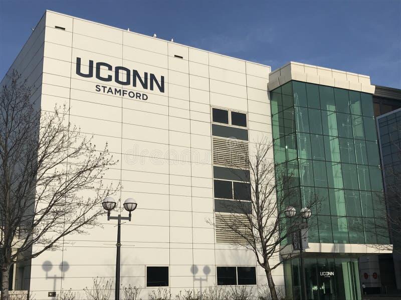 Universitet av den Connecticut universitetsområdet i Stamford royaltyfri fotografi
