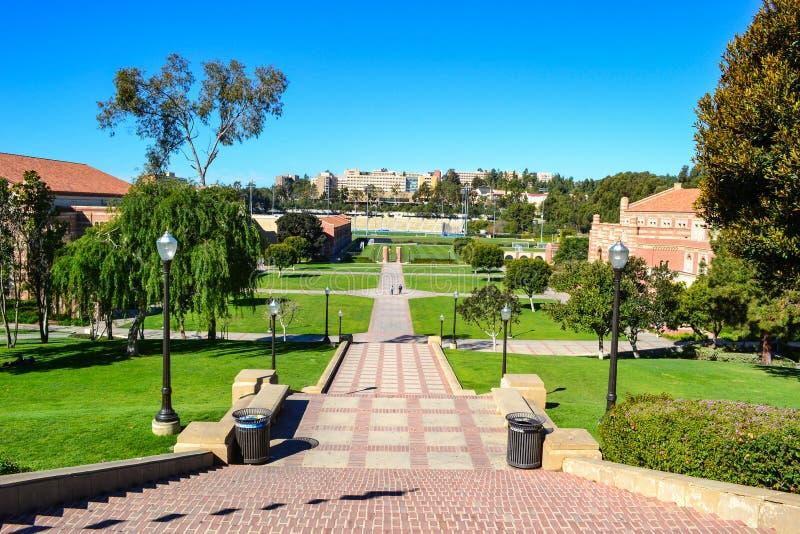 Universitet av den Kalifornien Los Angeles UCLA universitetsområdet royaltyfri foto