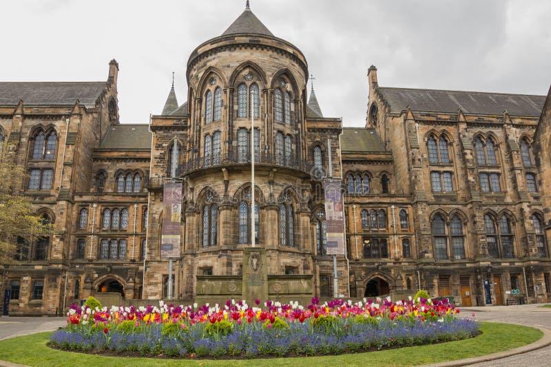 Universitet av Glasgow som bygger på Gilmorehill, Hunterian museum, Bute Hall, konserthall, besökaremitt med färgrika blommor royaltyfria bilder