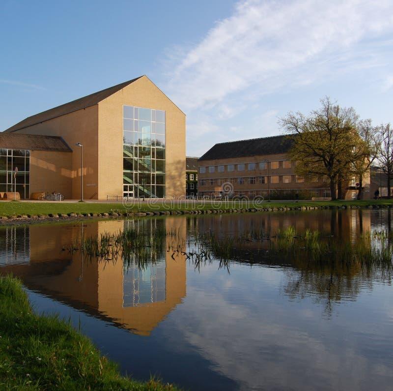 universitetar för aarhus salongbyggnad royaltyfria foton