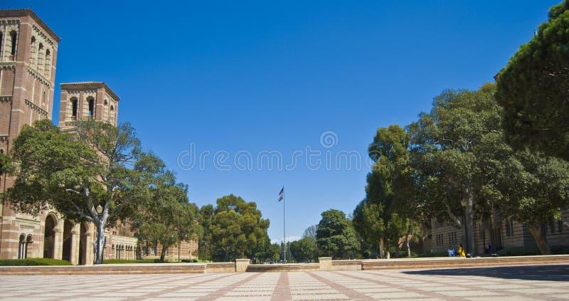 universitetar för universitetsområdeflaggalawn arkivfoton