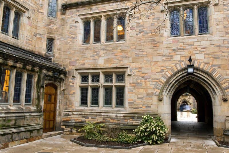 universitetar yale royaltyfri foto