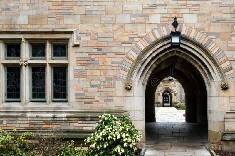 universitetar yale arkivfoton