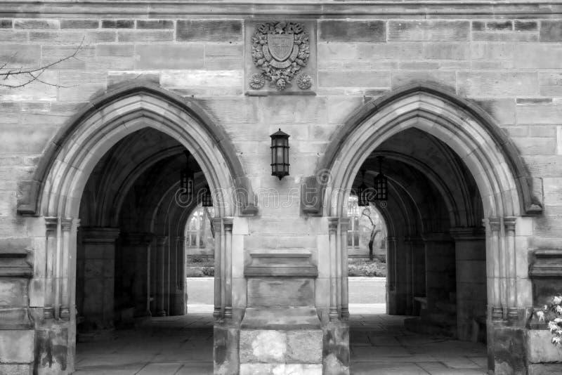 universitetar yale royaltyfri fotografi
