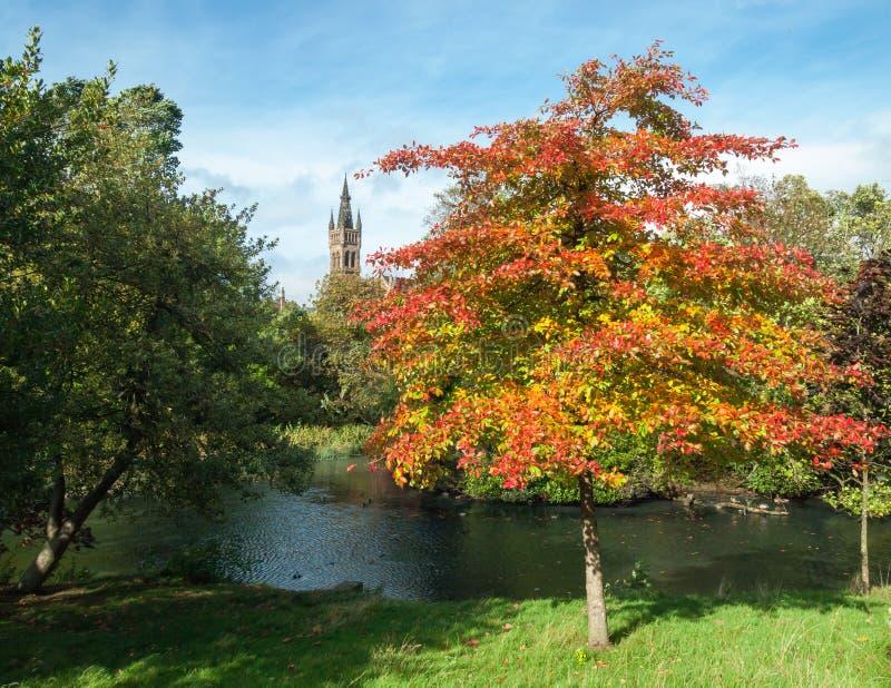 Universitetet av Glasgow från Kelvingrove parkerar på en solig höstdag fotografering för bildbyråer