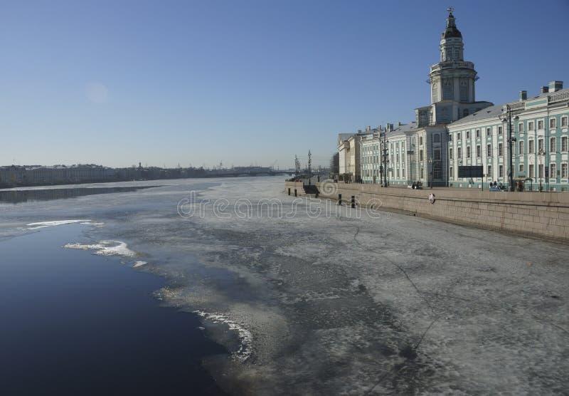 Universitetinvallning i St Petersburg fotografering för bildbyråer