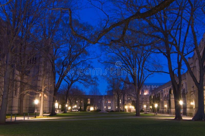 universitetsområdenatt royaltyfri bild