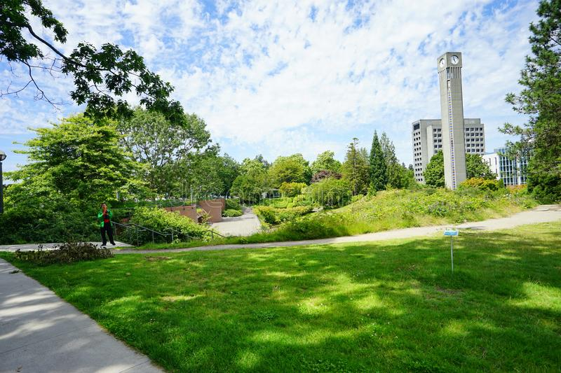 University of British Columbia UBC. VANCOUVER, CA -Located on a beautiful peninsula at Point Grey, the University of British Columbia UBC is a major public royalty free stock photography