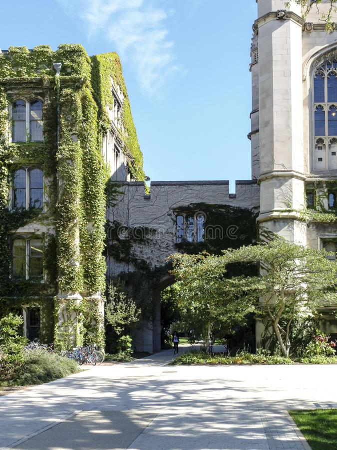 University of Chicago Campus stock image