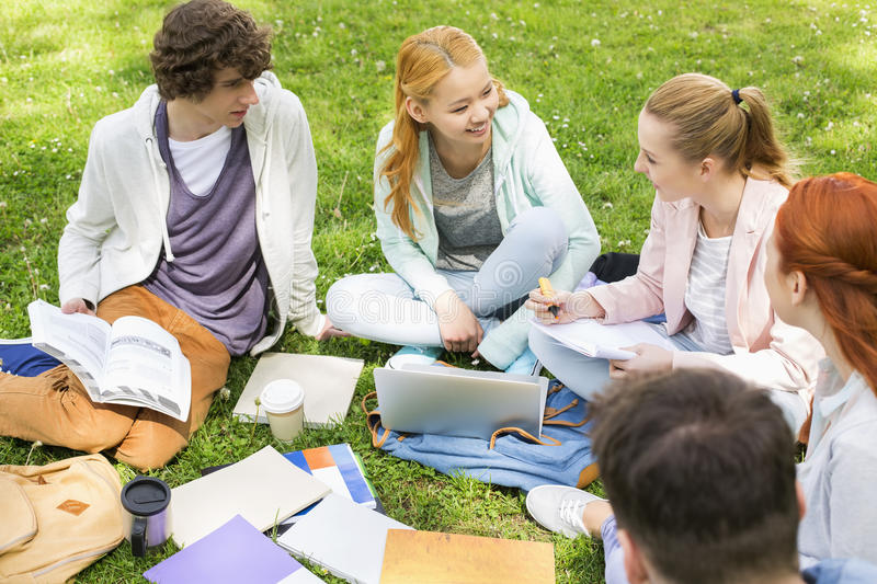 University friends studying together on grass royalty free stock images