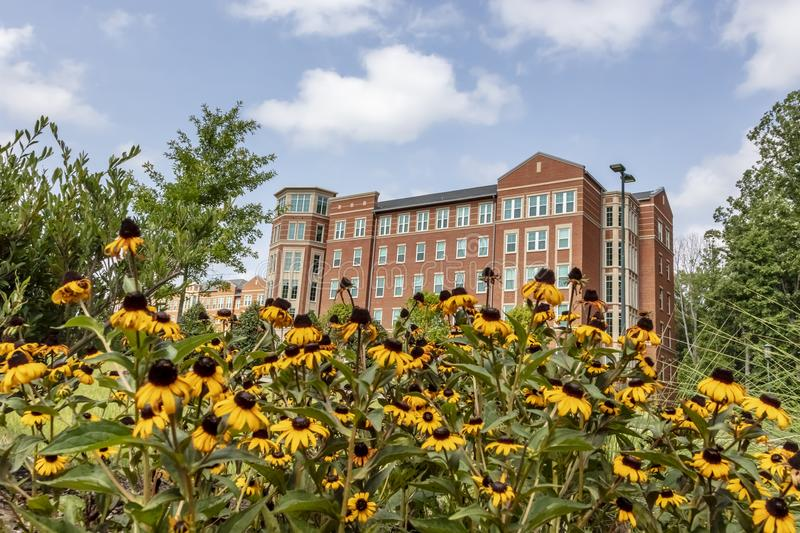 University Of North Carolina At Charlotte. The University of North Carolina at Charlotte, also known as UNC Charlotte, is a public research university located in royalty free stock photo