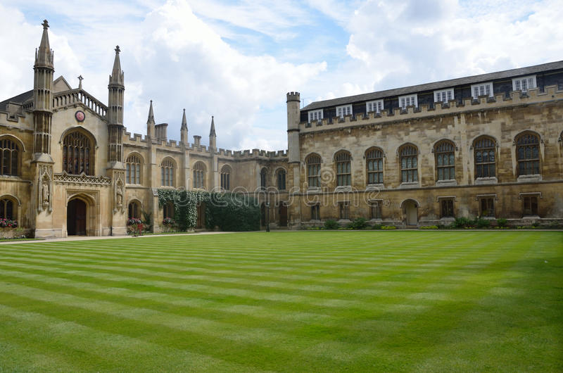 University quadrangle. And green lawn stock photos