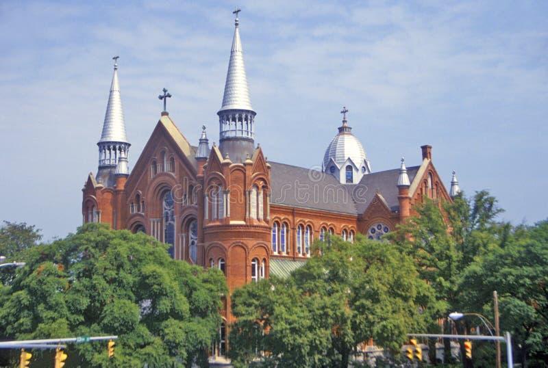 Uniwersytet Floryda, Tampa, Floryda obrazy royalty free