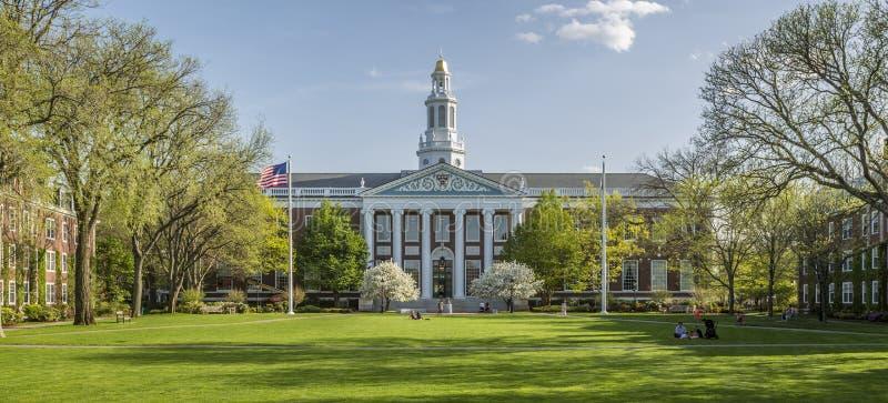 Uniwersytet Harwarda obrazy royalty free