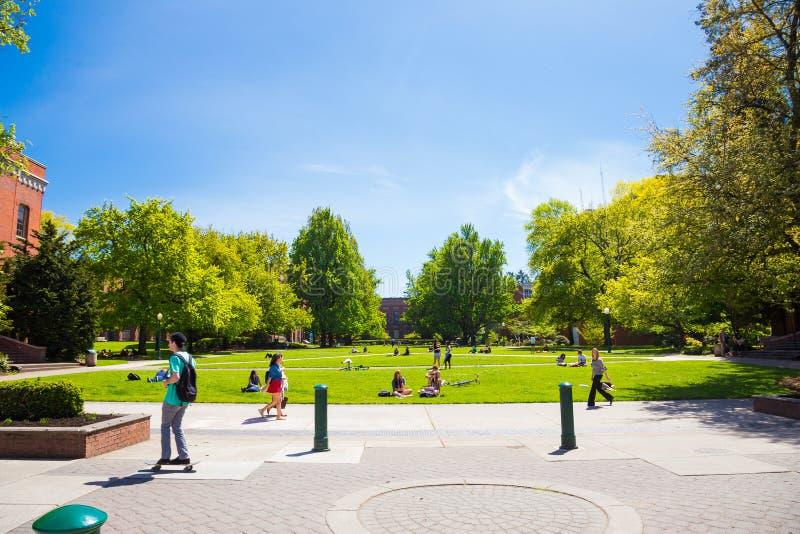 Uniwersytet Oregon kampusu trawy plac zdjęcia stock