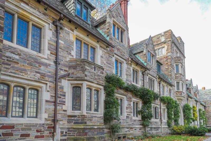 Uniwersytet Princeton jest Intymnym bluszcza liga uniwersytetem w Nowym - bydło, usa zdjęcie stock