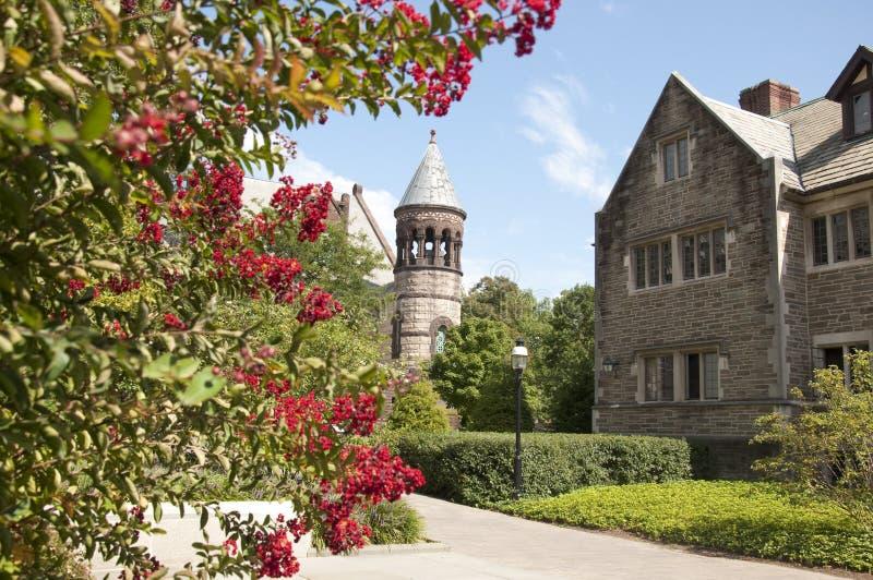 Uniwersytet Princeton Kampus zdjęcie royalty free