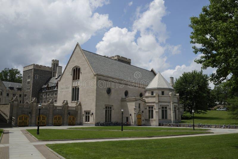 Uniwersytet Princeton, usa obraz royalty free