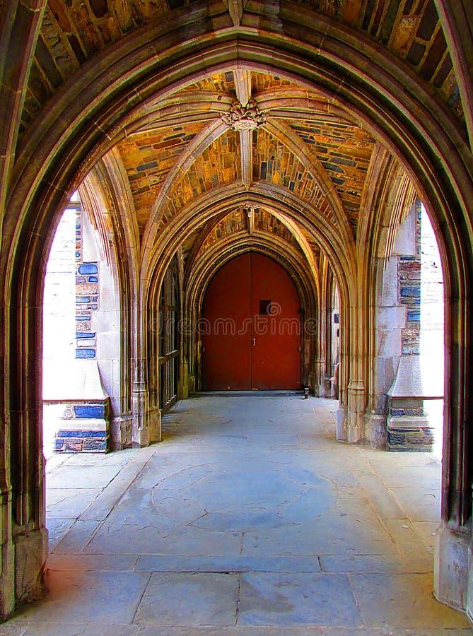 Uniwersytet Princeton w Nowym - bydło obrazy stock