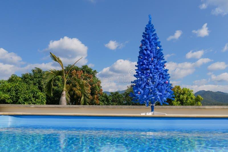 Unkonventioneller blauer Weihnachtsbaum im grünen tropischen Garten mit Swimmingpool lizenzfreie stockfotos