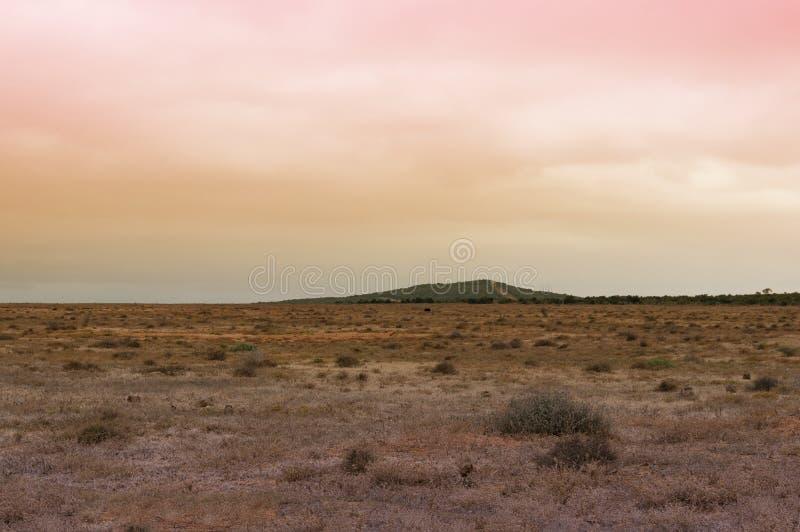 Unnatürliche trockene Landschaft mit sonderbarer Himmelfarbe lizenzfreie stockfotografie