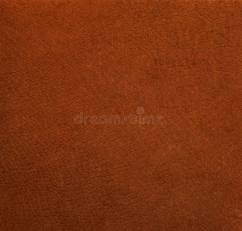 Free Unnatural Leather Royalty Free Stock Photos - 25625668