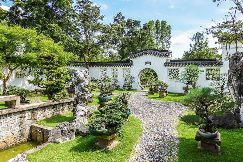 Uno del jardín con el árbol y la roca de los bonsais de los differents foto de archivo libre de regalías