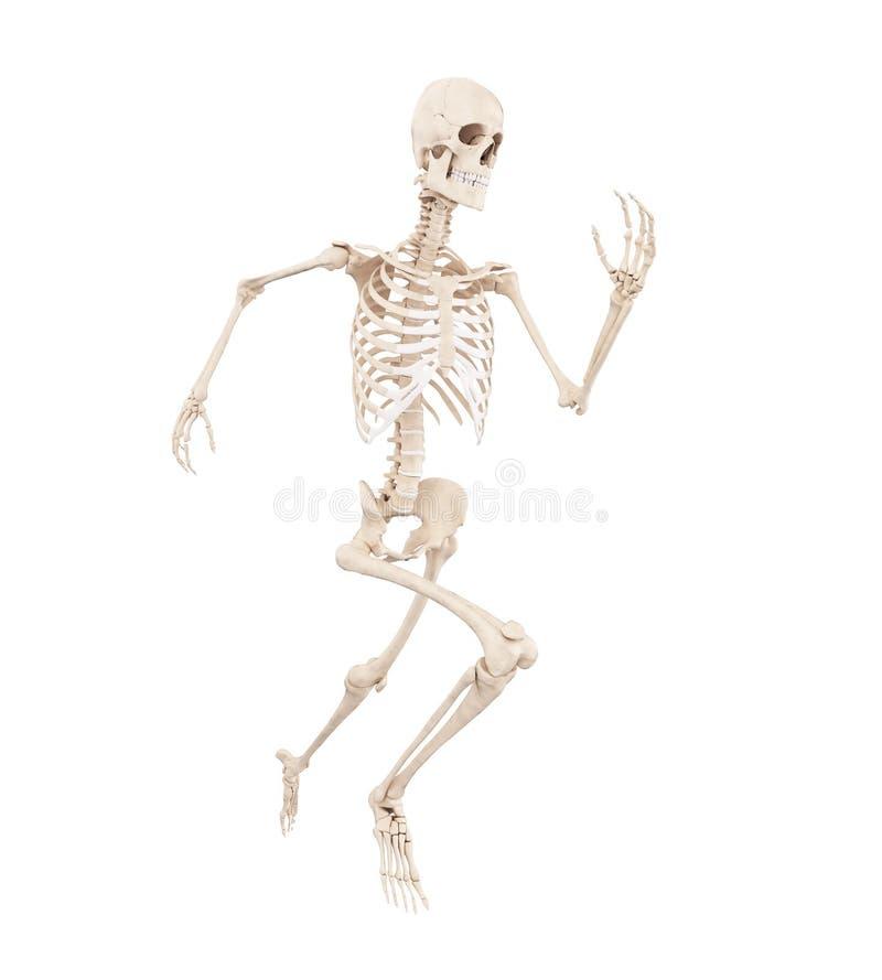 Uno scheletro corrente illustrazione vettoriale