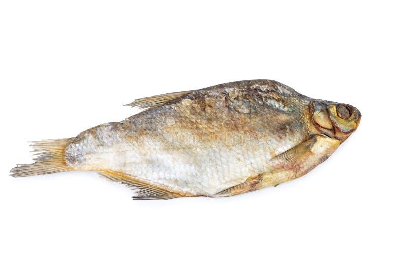 Uno secó los pescados salados aislados en el fondo blanco imagen de archivo