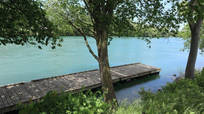 Uno sguardo in un lago con alcuni alberi immagine stock