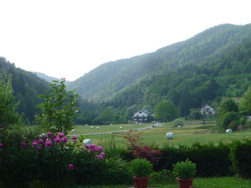 Uno Spring Valley in Slovenia immagine stock