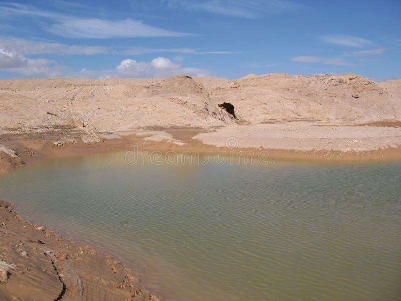 Uno stagno vicino ad Eilat, Israele immagine stock