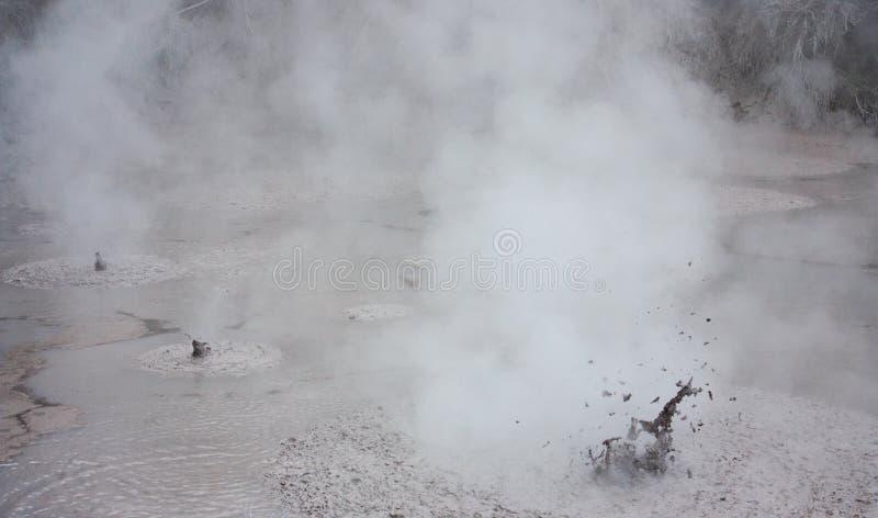 Uno stagno vulcanico naturale del fango al parco geotermico di Wai-O-Tapu in Nuova Zelanda fotografia stock libera da diritti