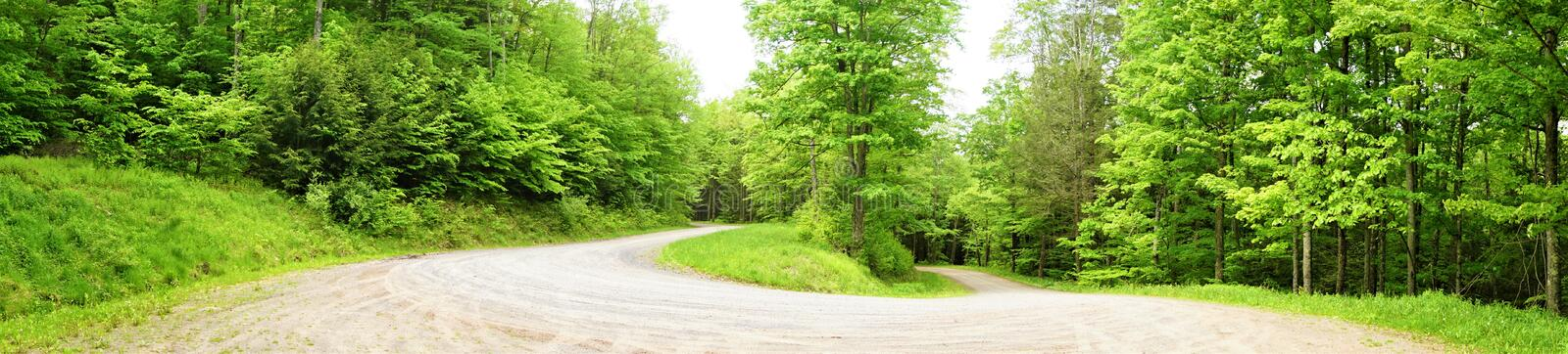 Panorama of hairpin turn road. Unpaved roadway in the woods curves one hundred and eighty degrees around a tight turn going down steep hill.  Inclined through stock photography