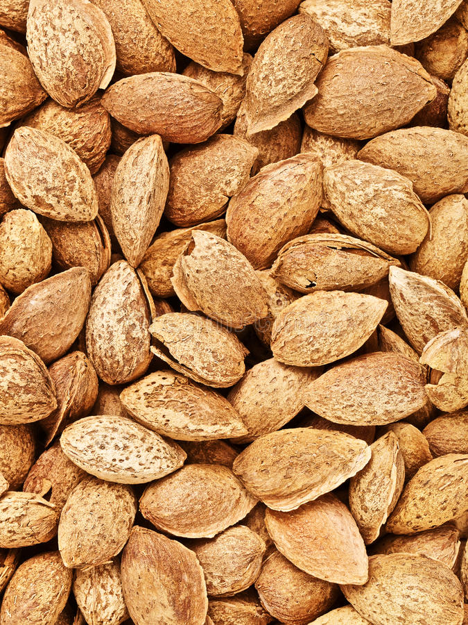 Unpeeled Almonds Nuts Background. Fresh raw unpeeled almonds nuts, food background stock images