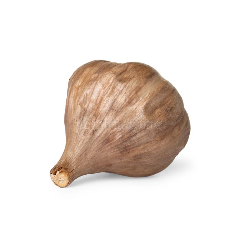 Unpeeled bulb of black garlic on white royalty free stock photo