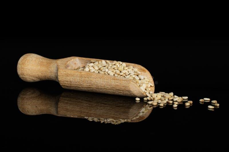 Unpeeled sesame seeds isolated on black glass stock photos