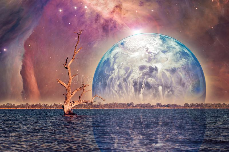 Unreal alien landscape,. Unreal alien landscape - bare tree growing in water with rising planet. Elements of this image are furnished by NASA stock illustration