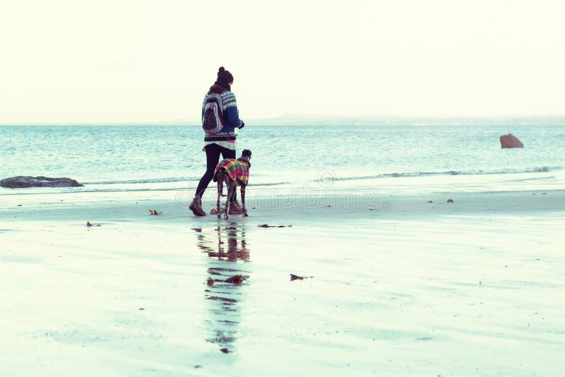 Unrecognisable gehendes Hippie-Mädchen ihr Hund, Windhund, auf dem Strand stockfotografie