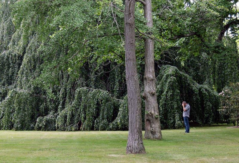 Unrecognisable Mann im kleinen Stadtpark in Newport stockfoto