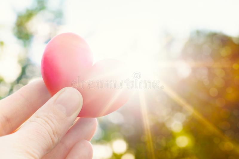 Download Person Holding Heart Shaped Plum Against The Sun. Love Concept Lifestyle Image With Sun Flare. Valentine`s Day Background. Stock Image - Image of mothers, valentines: 109757555
